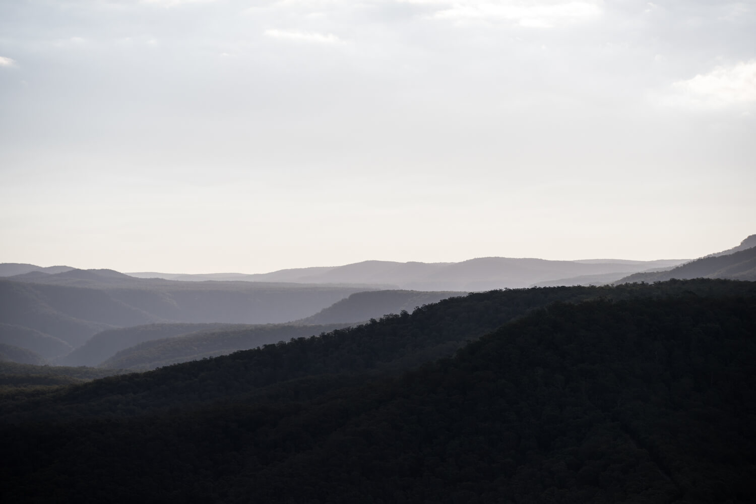 scenery of kangaroo valley bush retreat